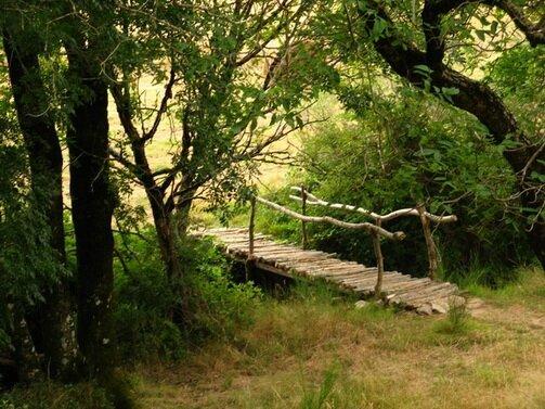 endroit-nature_11