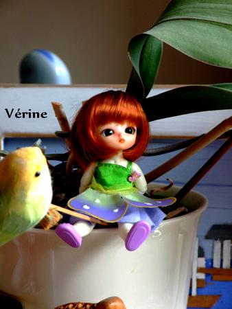 V_rine_59