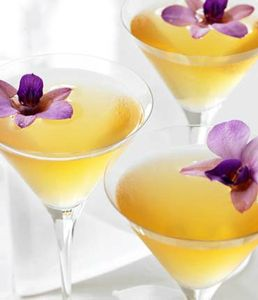 recipe-lecitron-butterfly-martini-cocktail-feature[1]