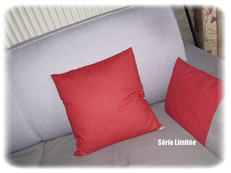 coussin Isa Tof