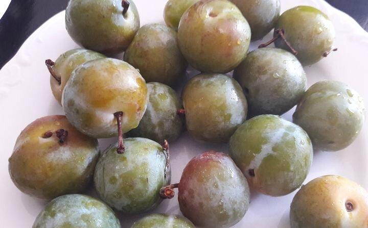 clafoutis reines-claudes, pistaches (2)