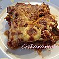 Aubergines gratinées à la bolognaise weight watchers