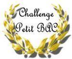 Petit_bac