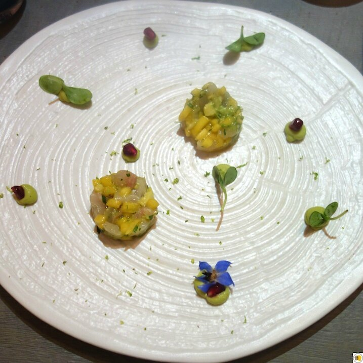 Tartare de Saint Jacques et de dorade royale, avocat, mangue (1)