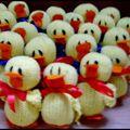 21 canards!!!