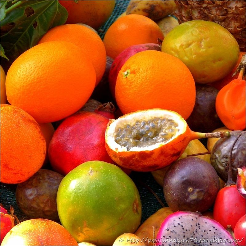 Fruits exotiques (1)