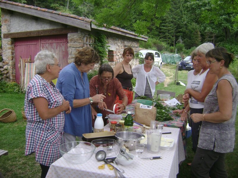 Les herbes sauvages les herbes sauvages - Cuisiner les herbes sauvages ...