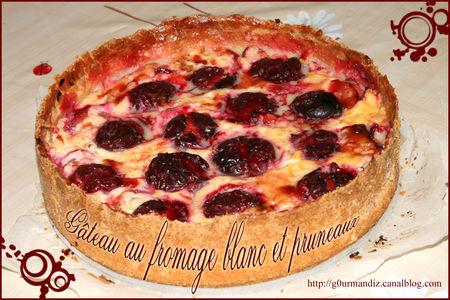 g_teau_au_fromage_blanc_et_pruneaux