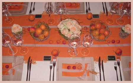 2009_07_07_table_abricots24