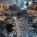 JARDIN d'hiver à CHENONCEAU