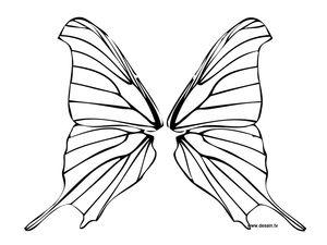 coloriage-ailes-de-papillon