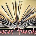 Teaser tuesday n°7 alexis (chroniques d'un arc'helar t1) de christelle verhoest