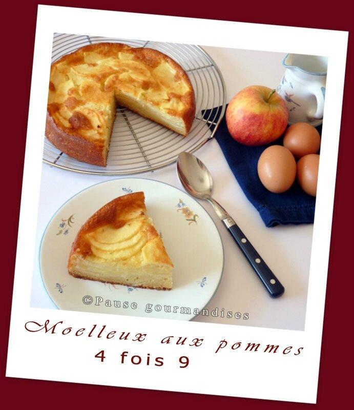 Moelleux aux pommes 4X9 (15)