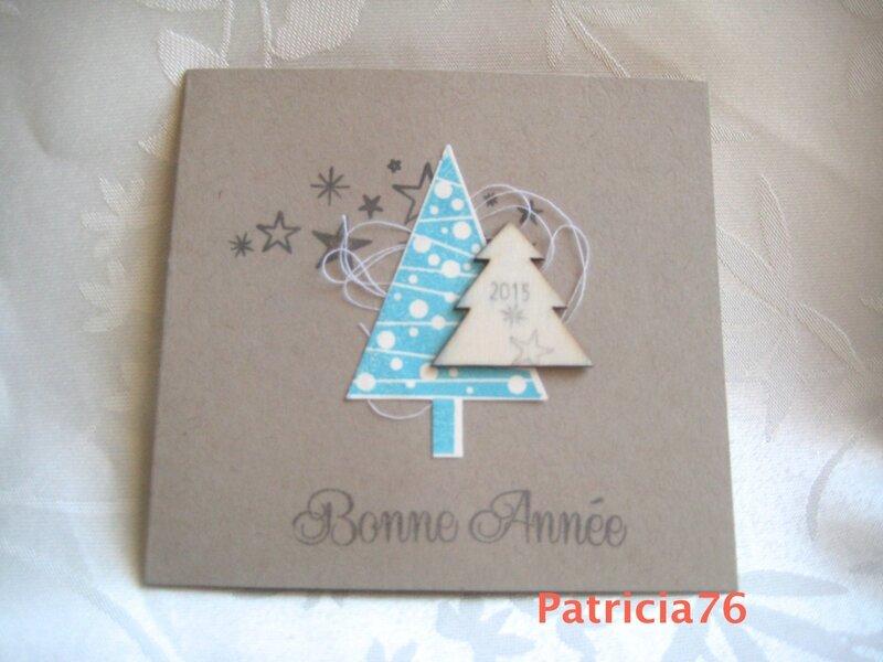 2015-CARTE VOEUX RECUE PATRICIA76