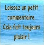 commentaire3