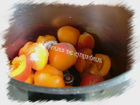 Coulis d'abricots 2