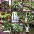 Jardin municipal de Funchal