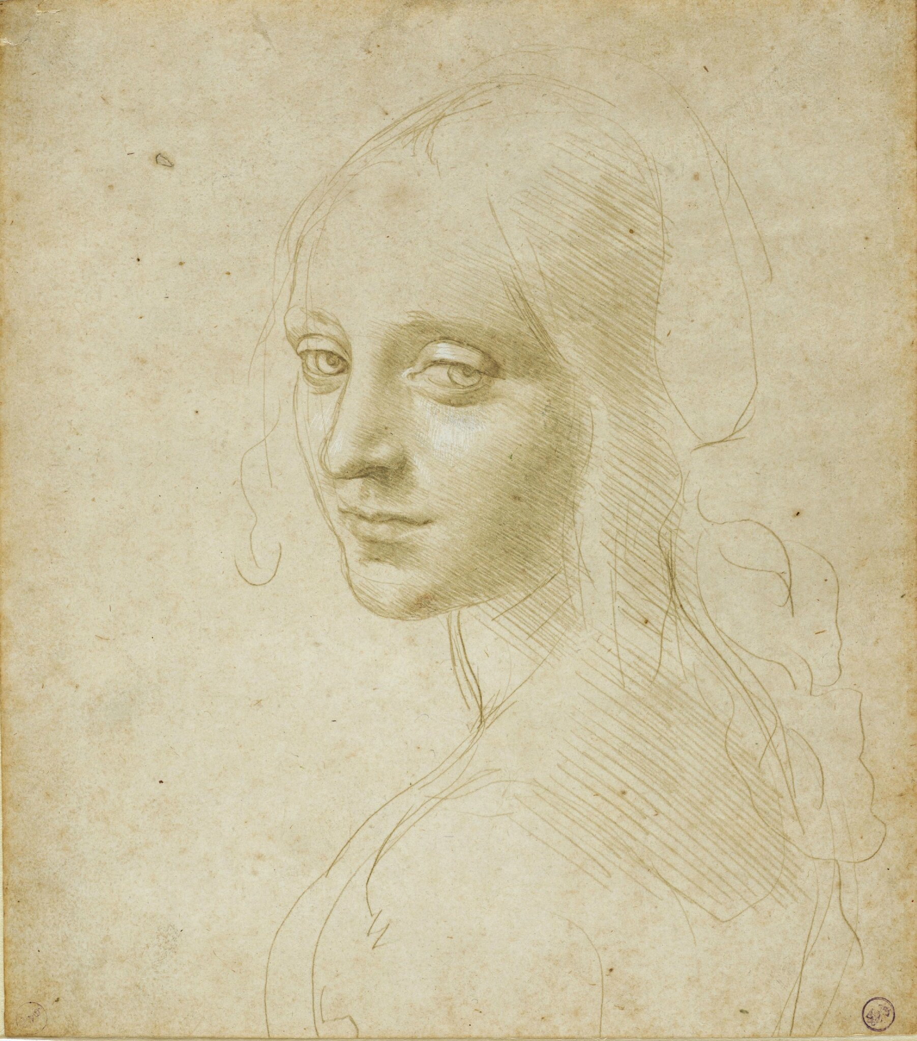 Leonardo da Vinci exhibition offers a very rare look at artist's fascination with beauty
