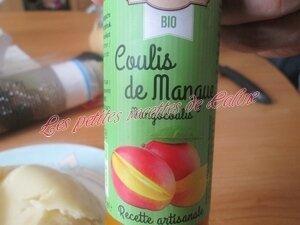 Bowl cake au yaourt vanillé et son coulis de mangue18