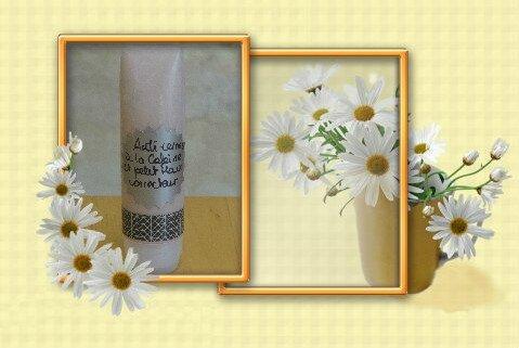 DSC02127_flower-225