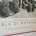 Producteur de fromage de bufflonne