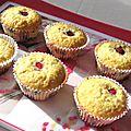 muffins framb2