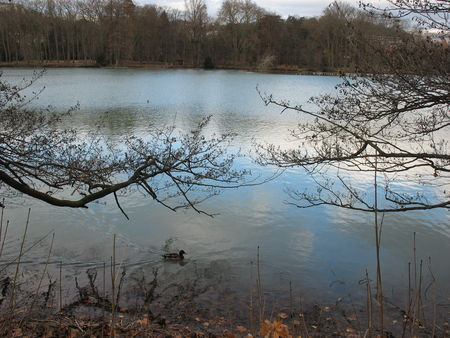 31_12___lac_Parc_T_te_d_Or__4_