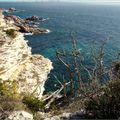 Au loin, les Îles Lavezzi, le Cimetière Marin