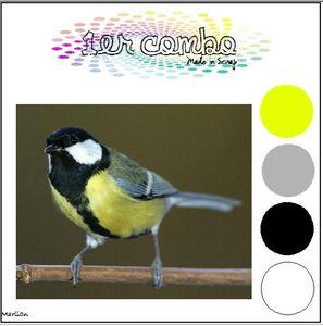 jaune_11_1_