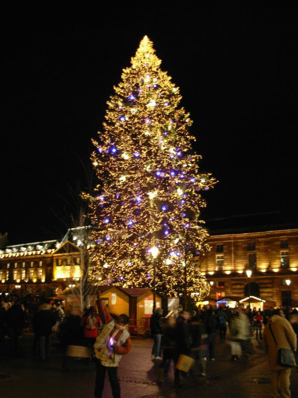 Le sapin g ant du march de no l de strasbourg l 39 ogresse - Video illumination de noel exterieur ...