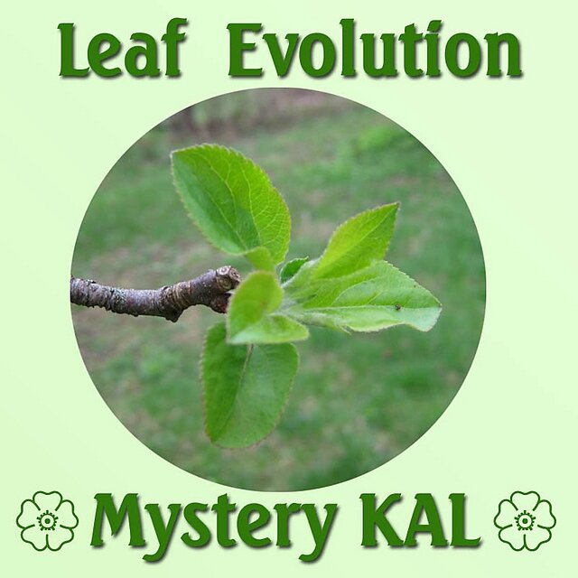 leaf-evolution
