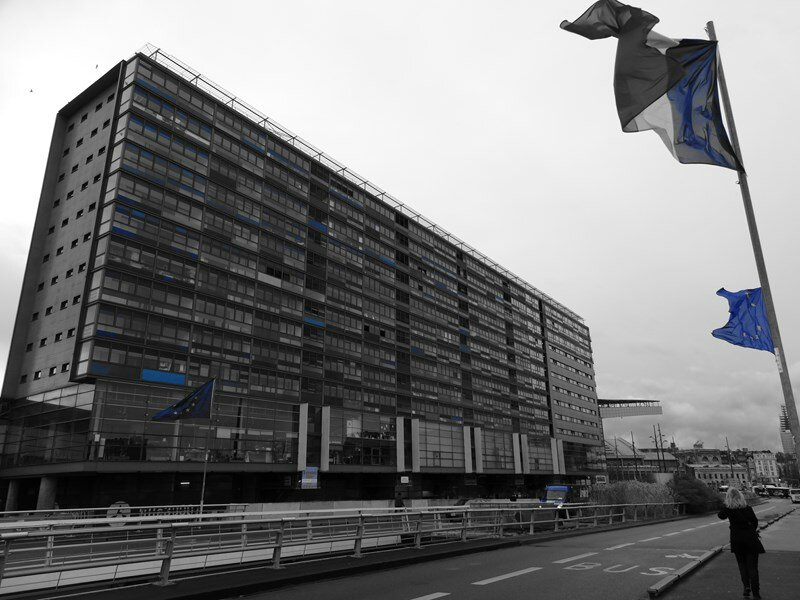 Lille (61)