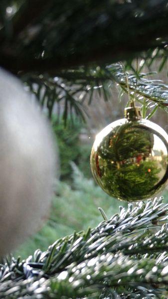 facevasion Noël 2012 (11)