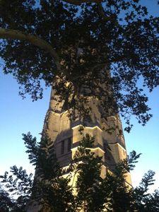 Ouverture de la tour Saint Jacques au public