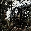 IMG_6499 R1 Ronquières le vieux canal