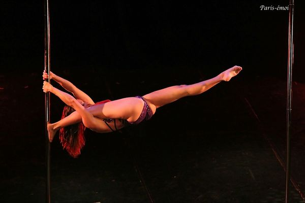 pole dance 2012-8243bnA copie