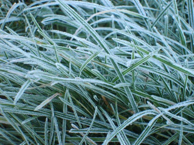 C 39 est l 39 hiver les passions de cathy - Jour de l hiver ...