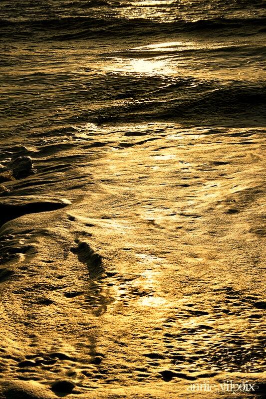 mer d'or