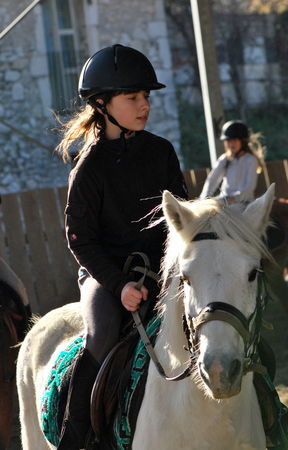 83Cheval_034