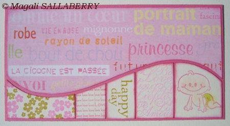 PCC3_Carte_La_cigogne_est_pass_e