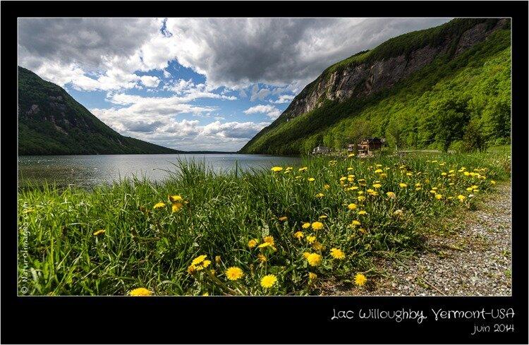 IMG_3003-naturelimages.com