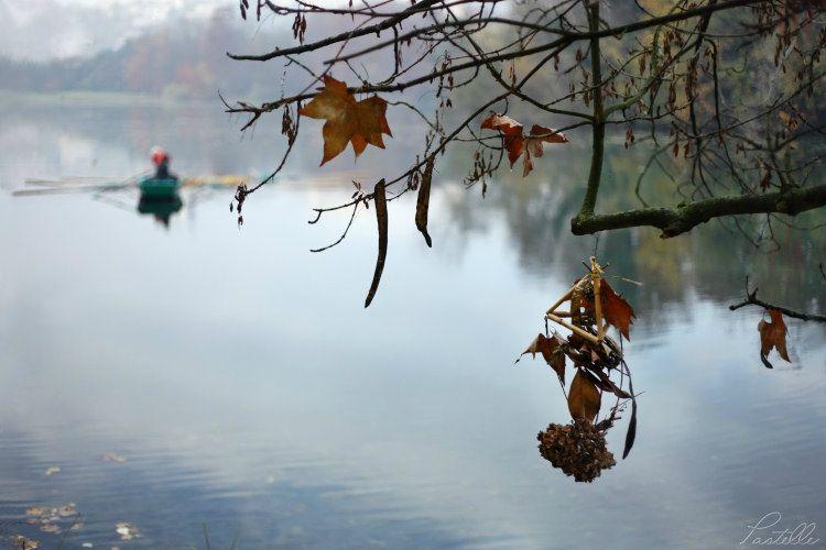 Sur l'eau tête d'Or_12 17 11_1674