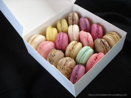 macarons_philomene