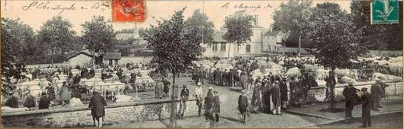 le-champ-de-foire-st-christophe-en-brionnais-au-début-du-xxe-siècle