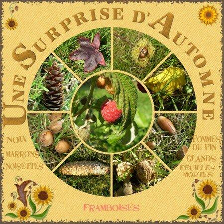 Surprise_d_automne_F