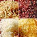 Le riz : le 'pain' sans gluten des asiatiques