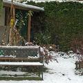 Banc du jardin sous la neige - 30 novembre 2008