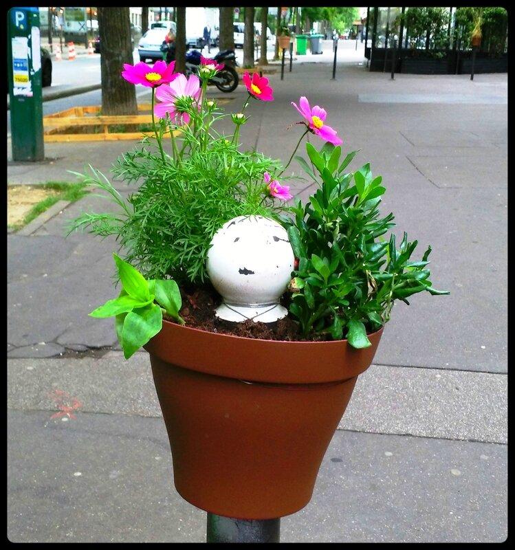 pot de fleur autour d'une borne anti-stationnement