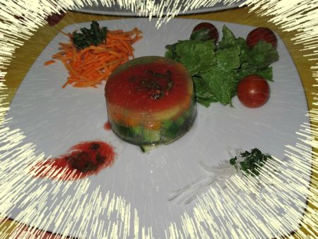 Terrine de lgumes et son coulis de tomate au basilic a