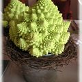table romanesco 035_modifié-1